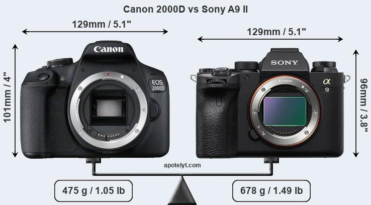 Size Canon 2000D vs Sony A9 II
