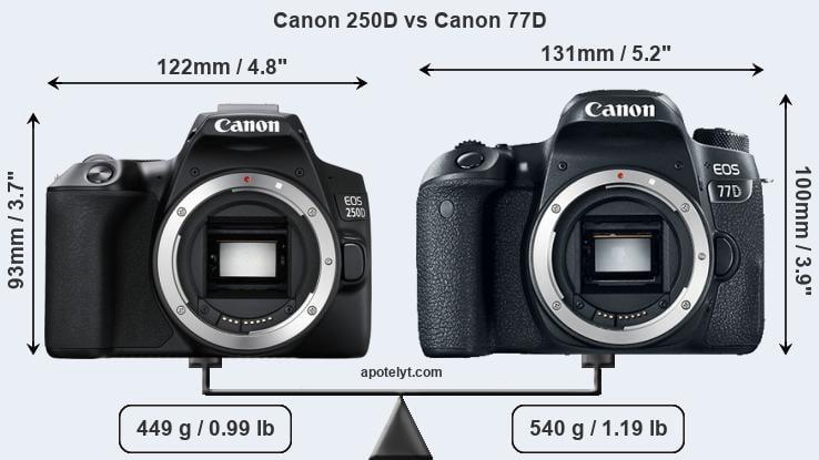 Canon 250D vs Canon 77D Comparison Review