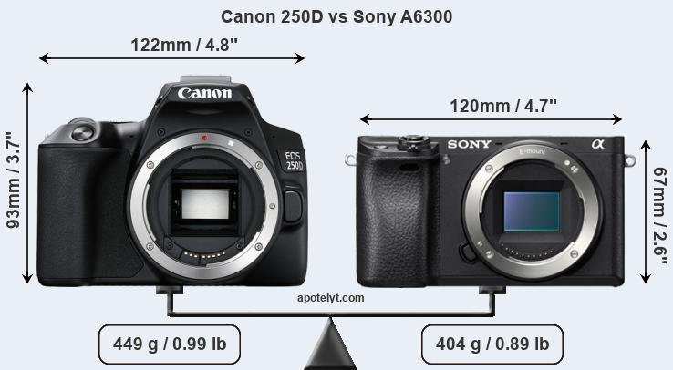 Size Canon 250D vs Sony A6300