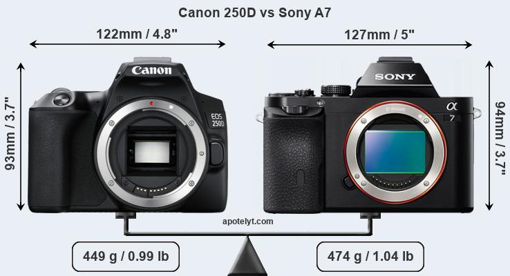 Size Canon 250D vs Sony A7