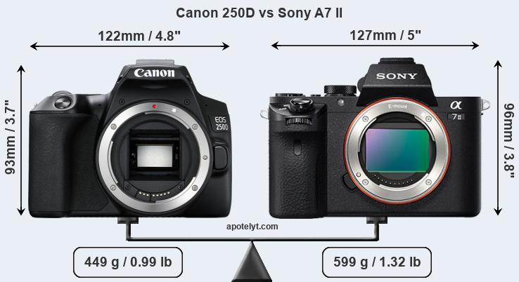 Size Canon 250D vs Sony A7 II