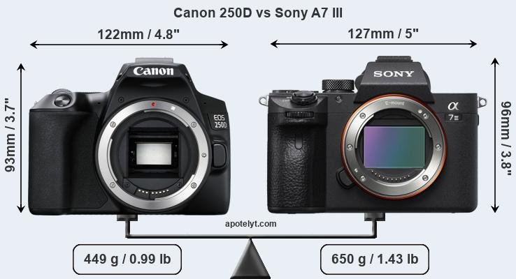 Size Canon 250D vs Sony A7 III