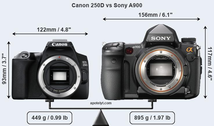 Size Canon 250D vs Sony A900