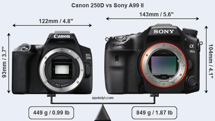 Size Canon 250D vs Sony A99 II