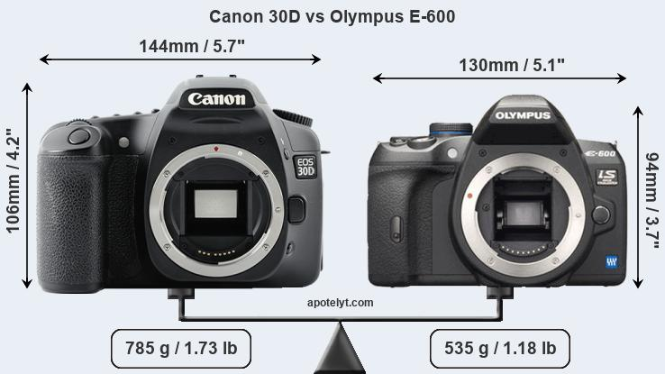 Canon 30D vs Olympus E-600 Comparison Review