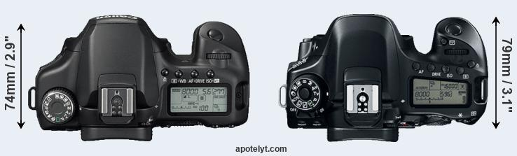 40D versus 80D top view