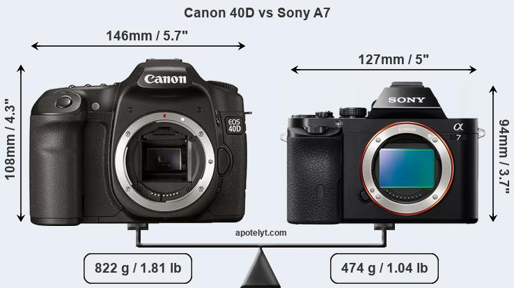 Size Canon 40D vs Sony A7