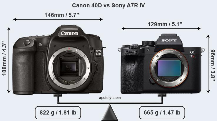 Size Canon 40D vs Sony A7R IV