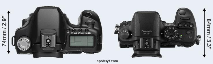 50D versus GH4 top view