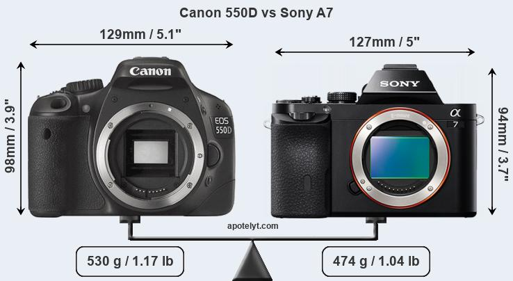 Size Canon 550D vs Sony A7