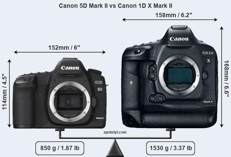 Snapsort Canon 5D Mark II vs Canon 1D X Mark II