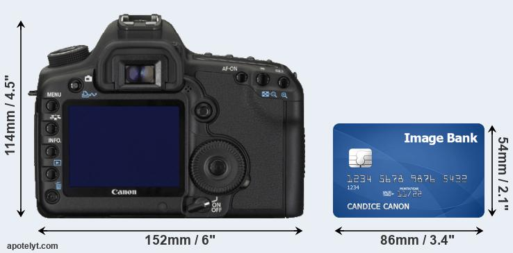 5D Mark II and credit card rear side