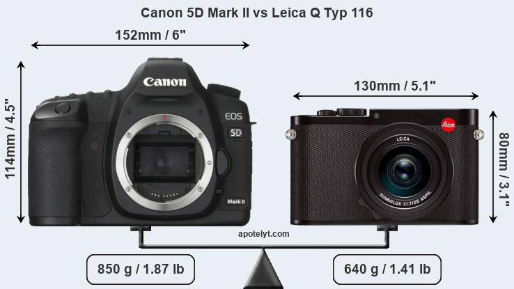 Size Canon 5D Mark II vs Leica Q Typ 116