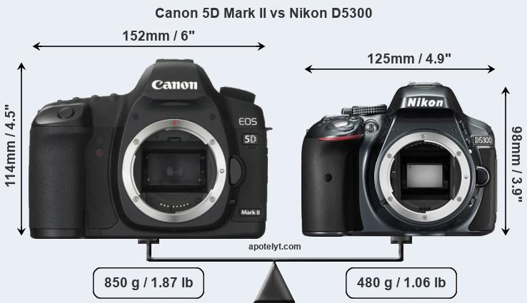 Size Canon 5D Mark II vs Nikon D5300