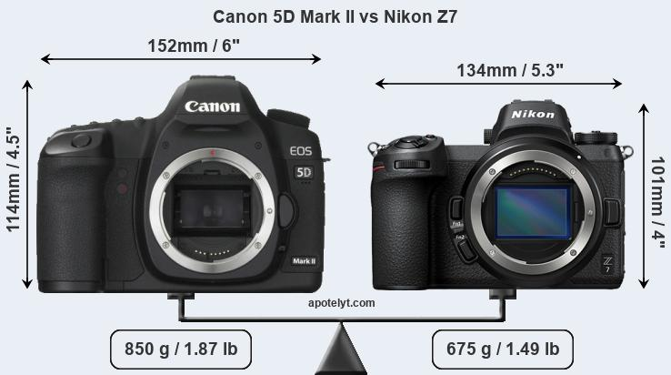 Size Canon 5D Mark II vs Nikon Z7