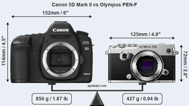 Size Canon 5D Mark II vs Olympus PEN-F