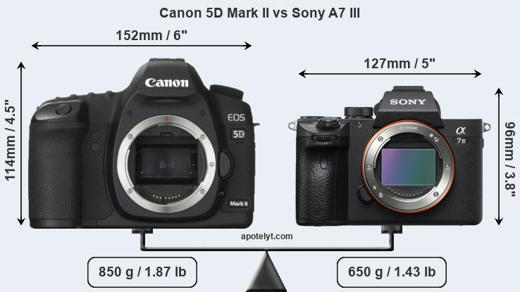 Size Canon 5D Mark II vs Sony A7 III