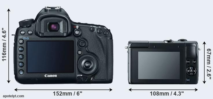 5D Mark III and M100 rear side