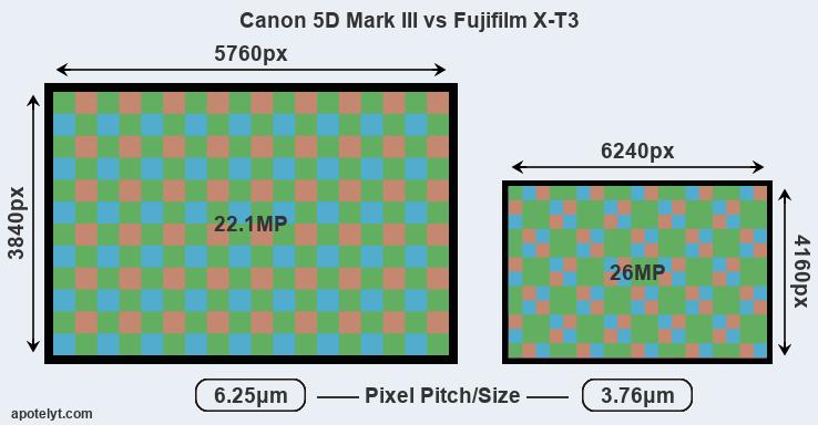 Canon 5D Mark III vs Fujifilm X-T3 Comparison Review