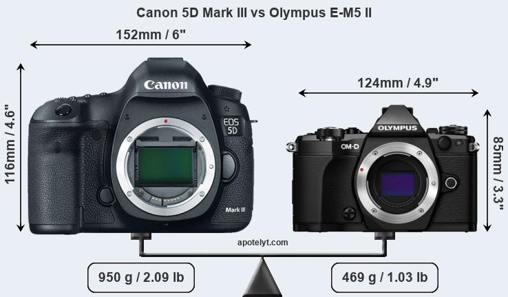 canon 5d mark iii vs olympus e m5 ii comparison review. Black Bedroom Furniture Sets. Home Design Ideas