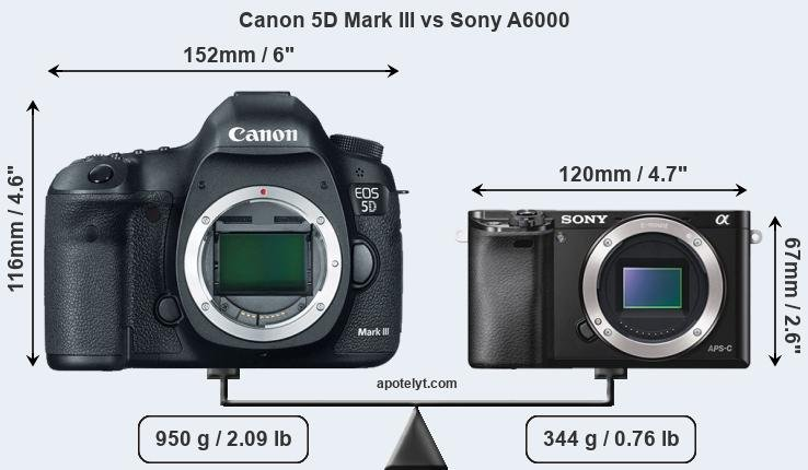 Size Canon 5D Mark III vs Sony A6000