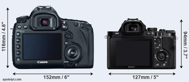 5D Mark III and A7 rear side