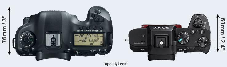 Kindle Vs Sony Reader: Canon 5D Mark III Vs Sony A7R II Comparison Review