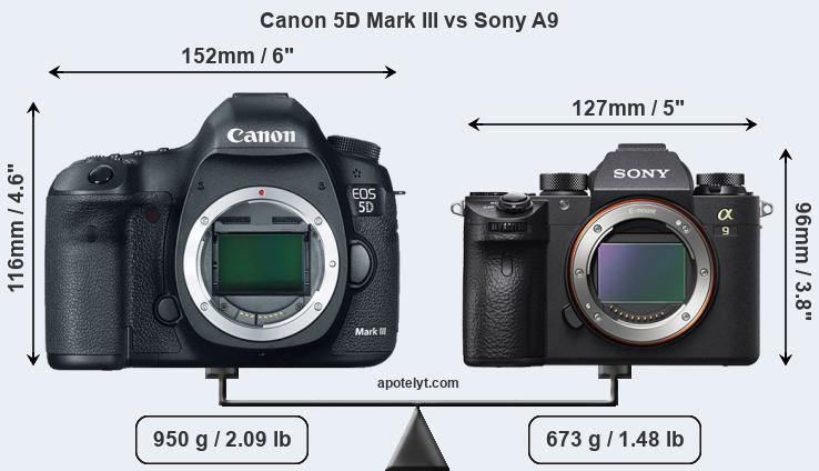 Size Canon 5D Mark III vs Sony A9