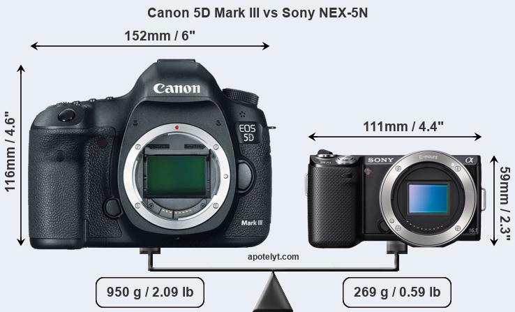 Size Canon 5D Mark III vs Sony NEX-5N