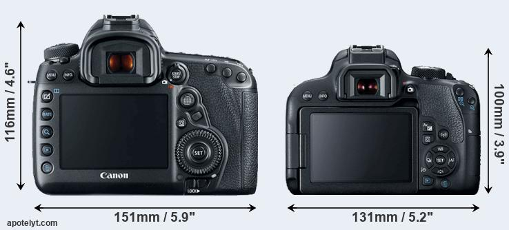 5D Mark IV and 800D rear side