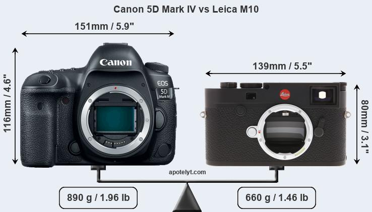 Size Canon 5D Mark IV vs Leica M10