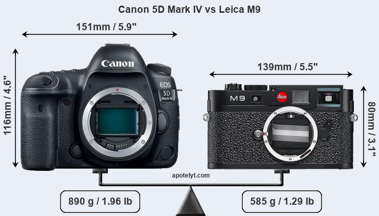 Size Canon 5D Mark IV vs Leica M9