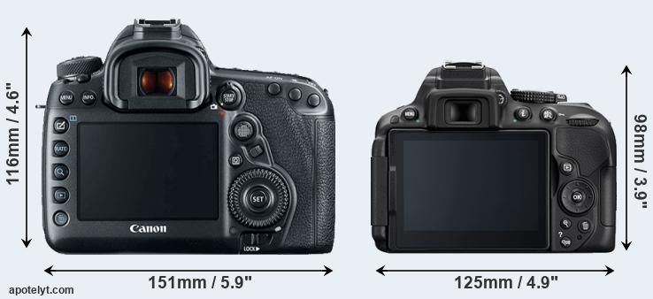 5D Mark IV and D5300 rear side