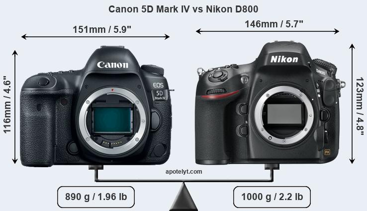 Size Canon 5D Mark IV vs Nikon D800