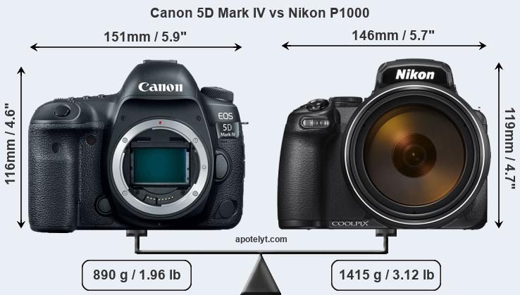 Size Canon 5D Mark IV vs Nikon P1000
