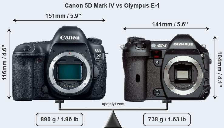 Size Canon 5D Mark IV vs Olympus E-1