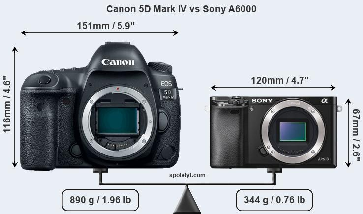 Size Canon 5D Mark IV vs Sony A6000