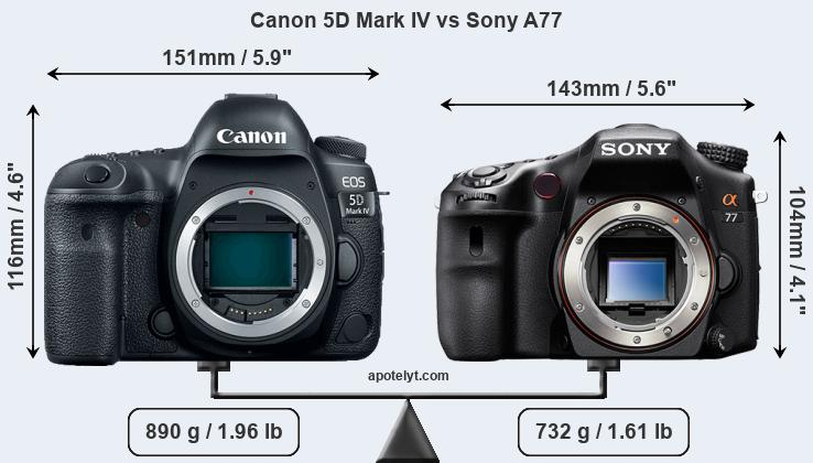 Size Canon 5D Mark IV vs Sony A77