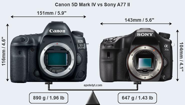 Size Canon 5D Mark IV vs Sony A77 II