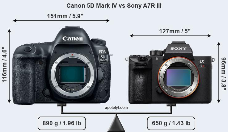 Size Canon 5D Mark IV vs Sony A7R III