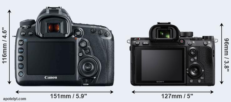 5D Mark IV and A7R III rear side