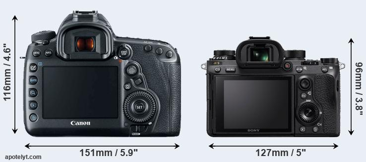 5D Mark IV and A9 rear side