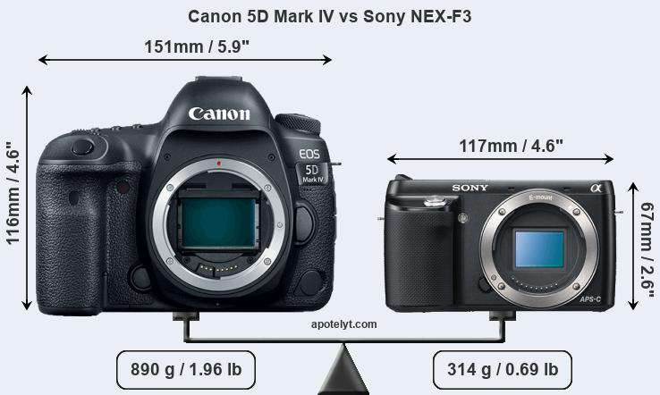 Size Canon 5D Mark IV vs Sony NEX-F3