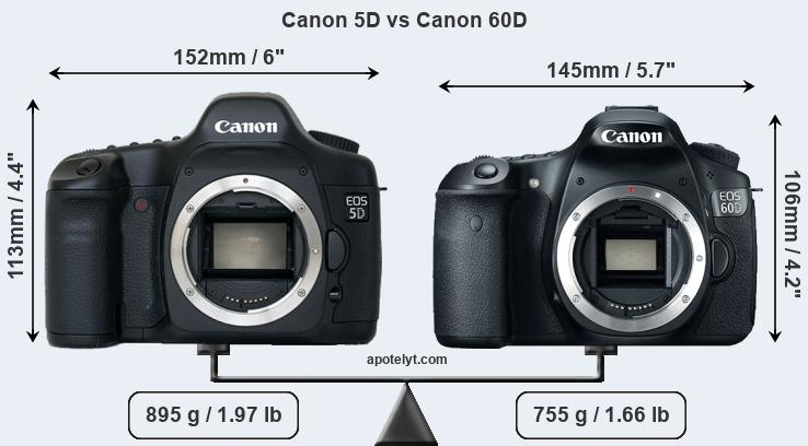 Compare Canon 5D and Canon 60D