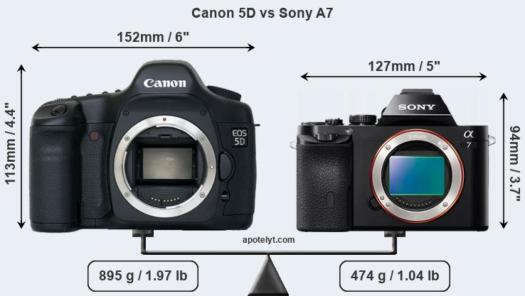 Size Canon 5D vs Sony A7