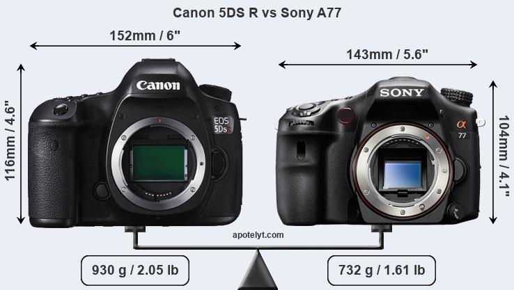 Size Canon 5DS R vs Sony A77