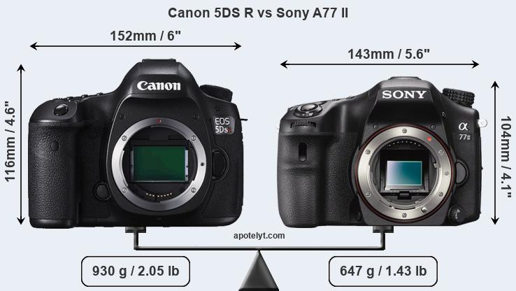 Size Canon 5DS R vs Sony A77 II