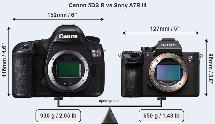 Size Canon 5DS R vs Sony A7R III