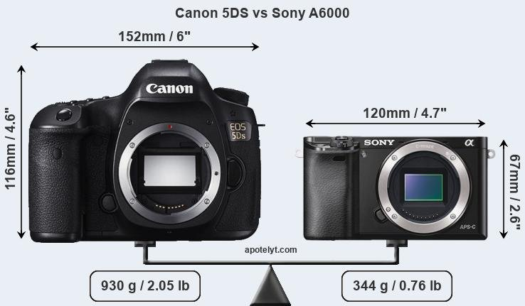 Size Canon 5DS vs Sony A6000