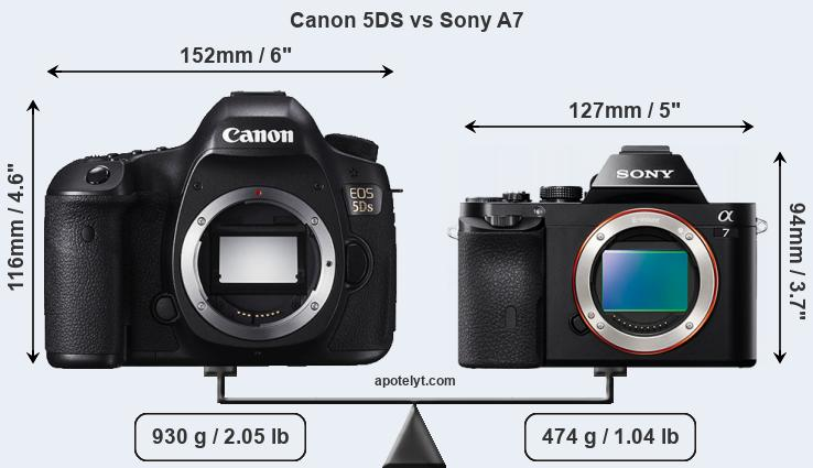 Size Canon 5DS vs Sony A7